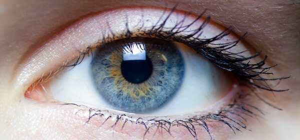 lentilles de contact pour la vue ou de couleur pour l'esthétisme